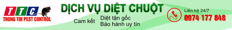 diet chuot